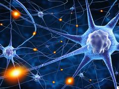 Polyneuropathie: Wenn Nerven schmerzen
