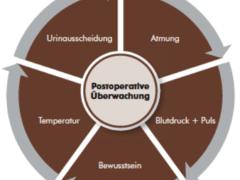 Grundlagen der postoperativen Pflege