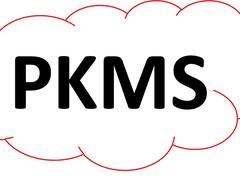 PKMS – hochaufwendige Pflege abbilden